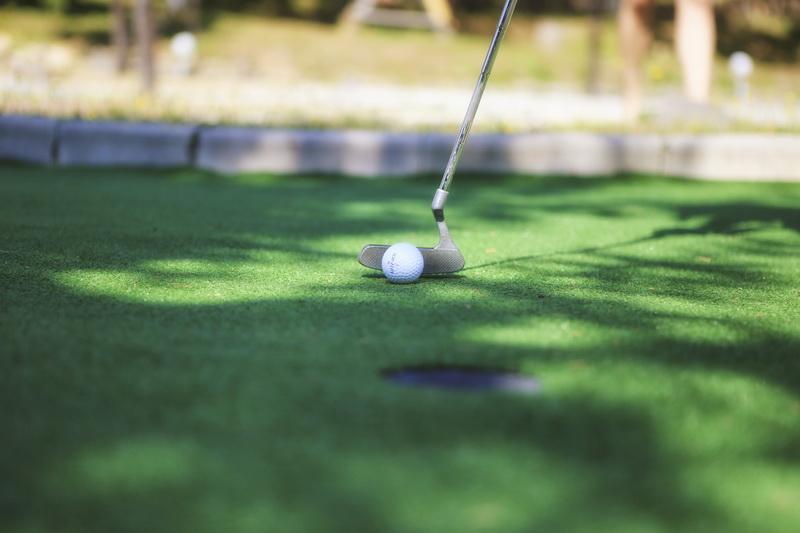 Активный отдых в Карпатах - игра в гольф : фото 1