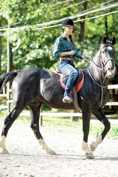 Уроки верховой езды в манеже